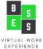 BESS Virtual Work Experience